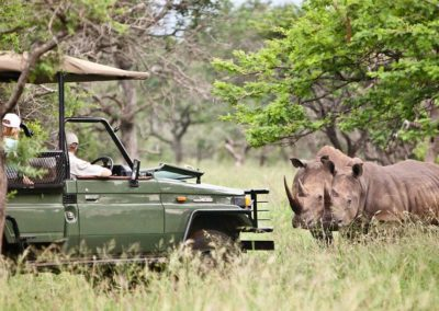 Msunduze-River-Lodge-KZN-Game Drive